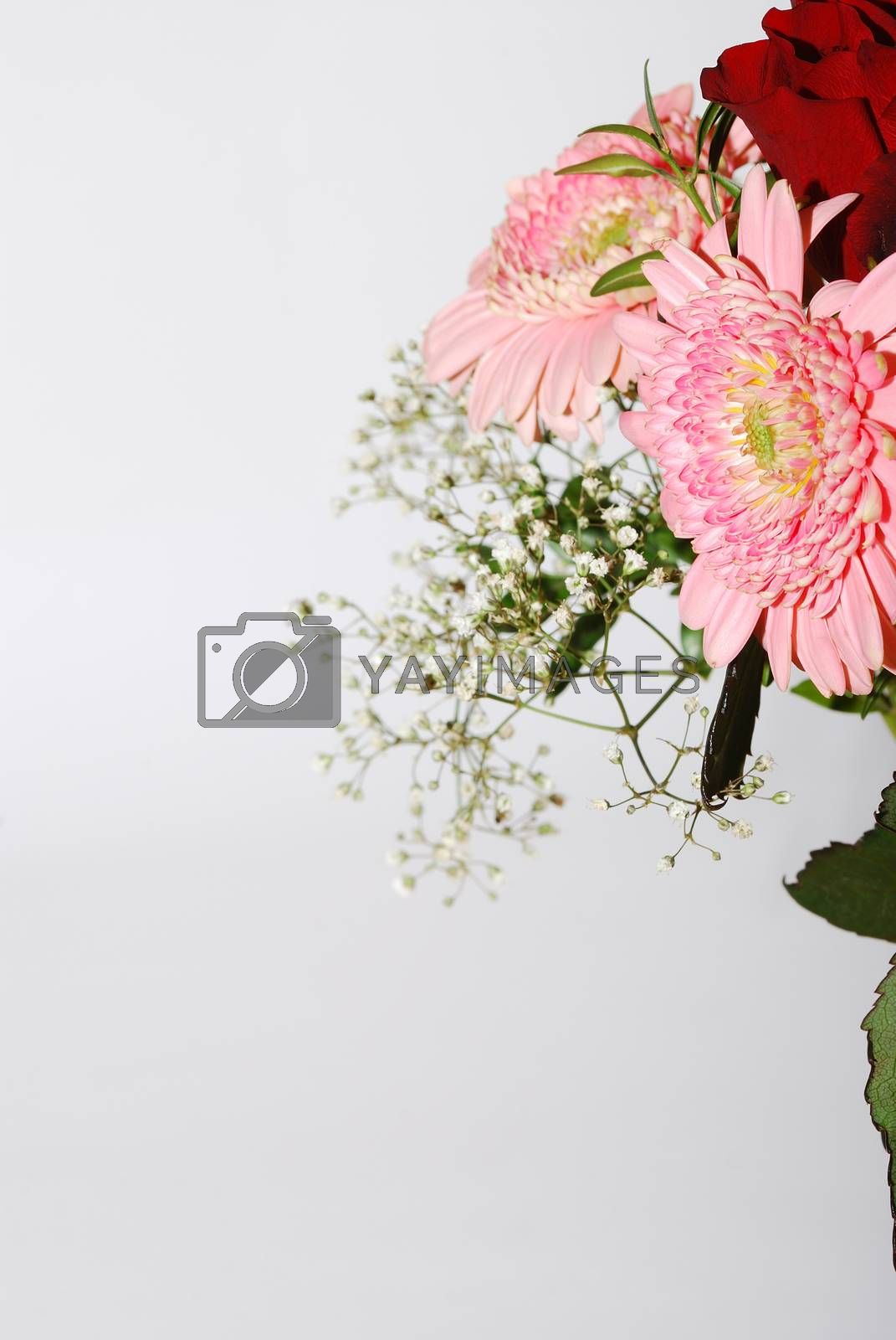bouquet of fresh colorful flowers portrait view on white background