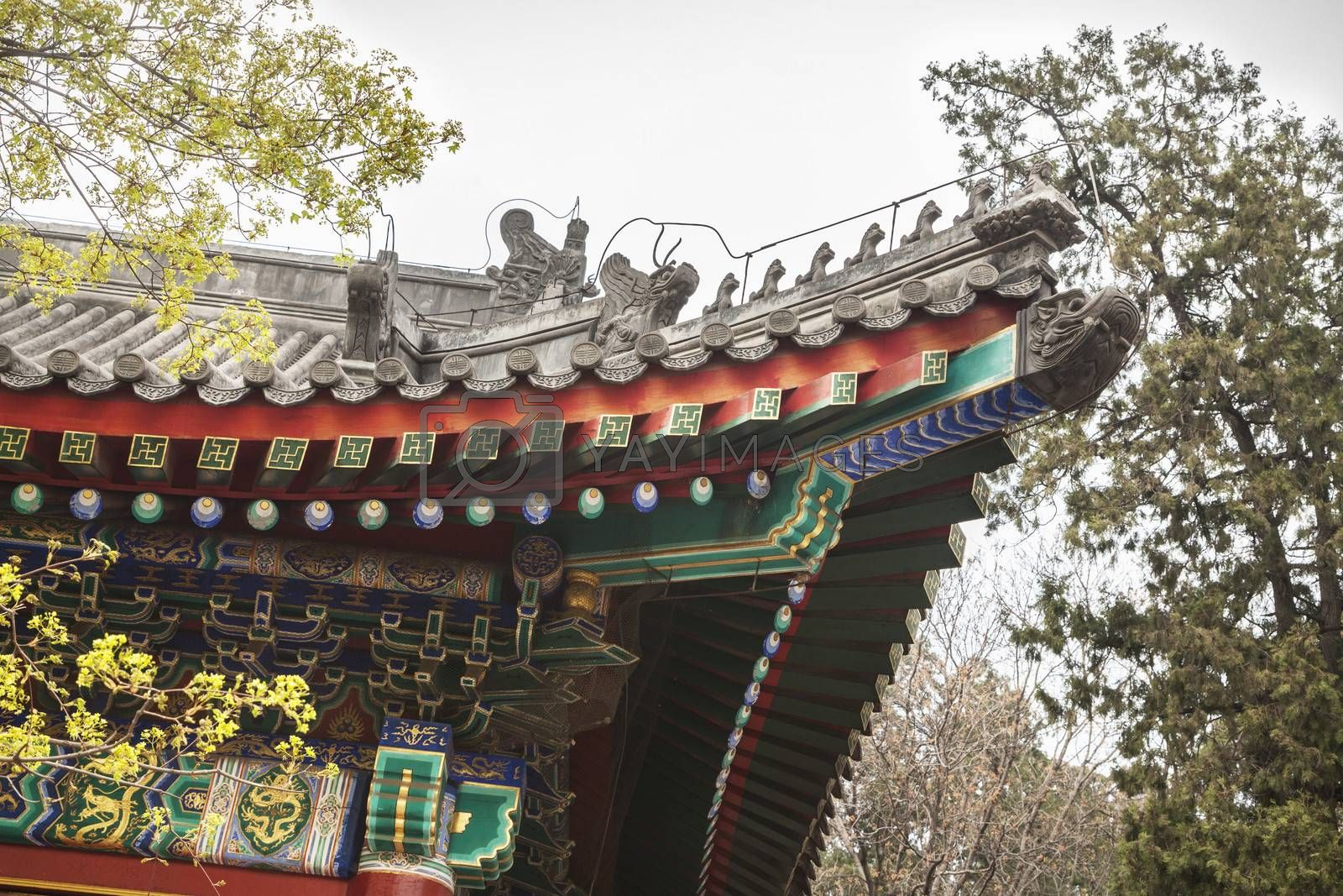 Close-up of ornate Chinese rooftop.
