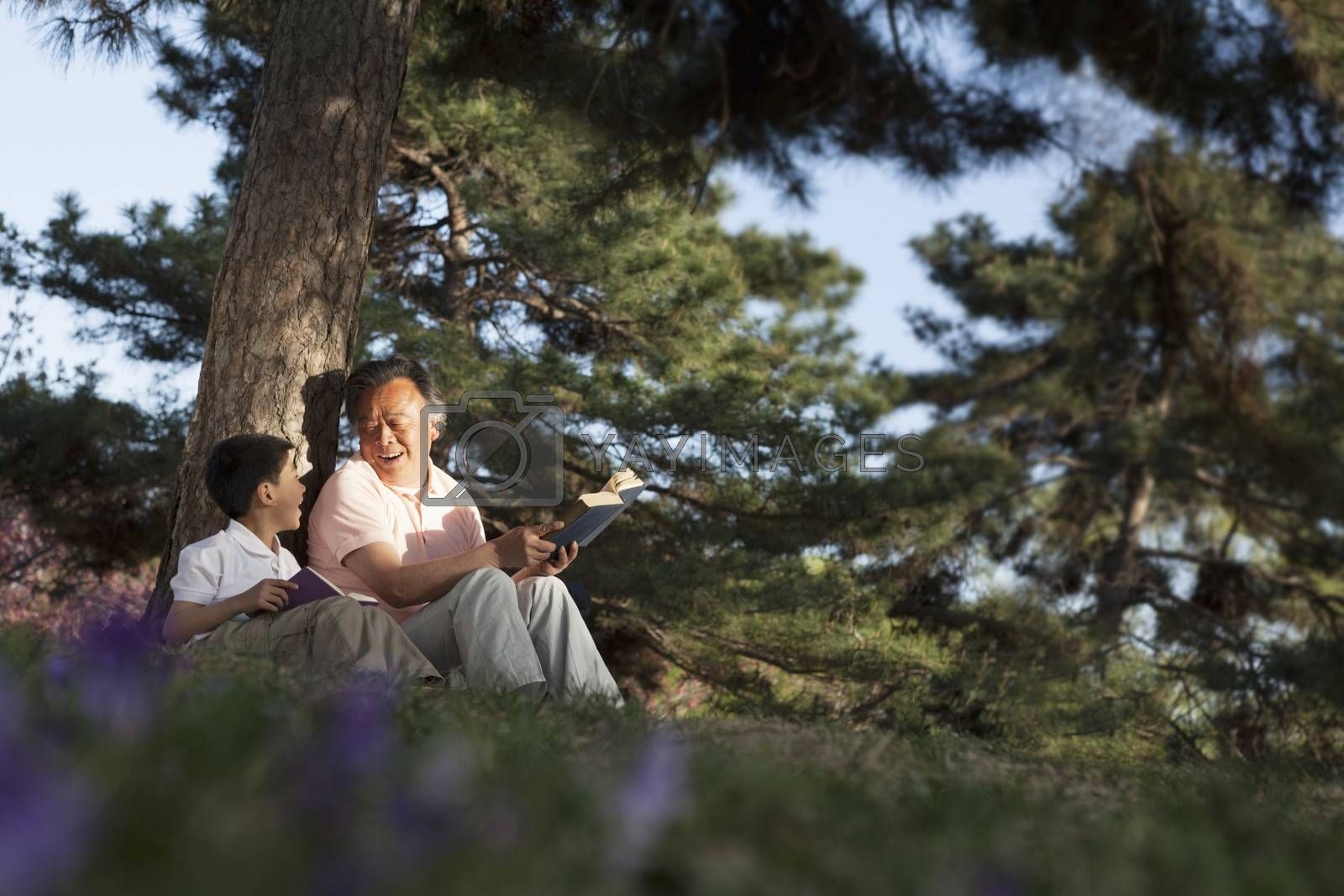 Grandfather and grandson relaxing under a tree and reading books in a park in the springtime, Beijing