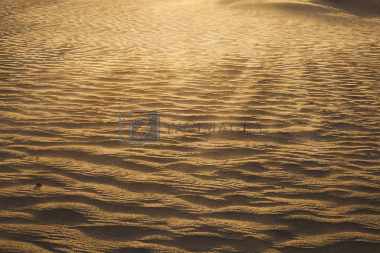 Landscape shot of the desert and the wind pattern on the sand, full frame