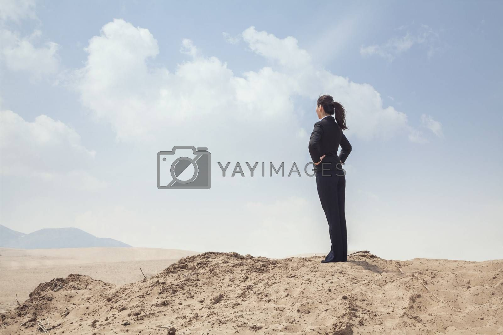 Young businesswoman standing with hands on hips looking out over the desert
