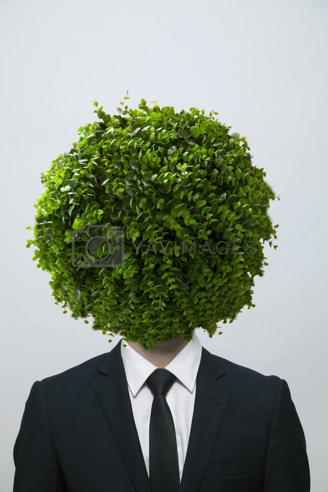 Businessman with a circular bush obscuring his face, studio shot by XiXinXing