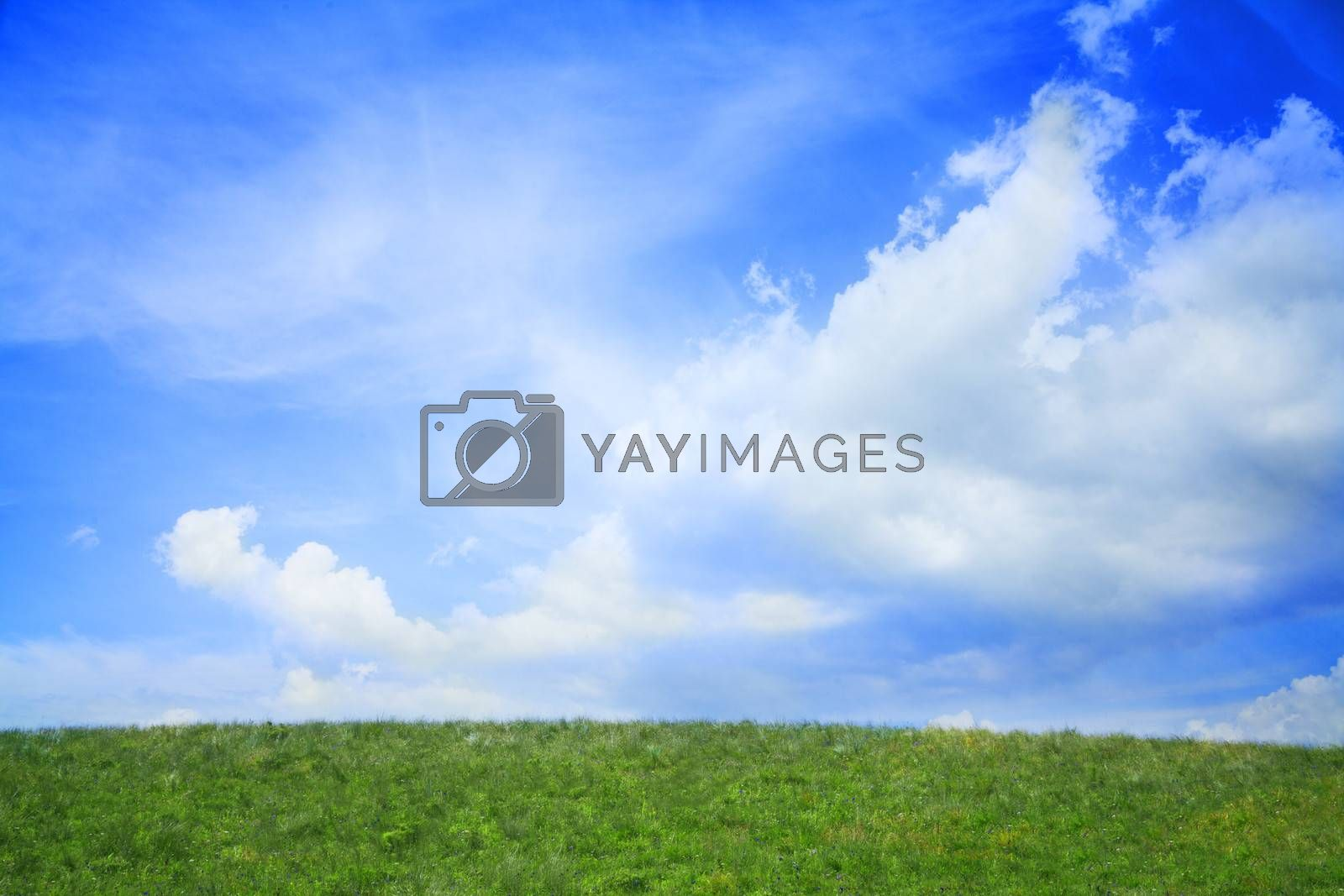 Lush, green landscape with blue sky and clouds.