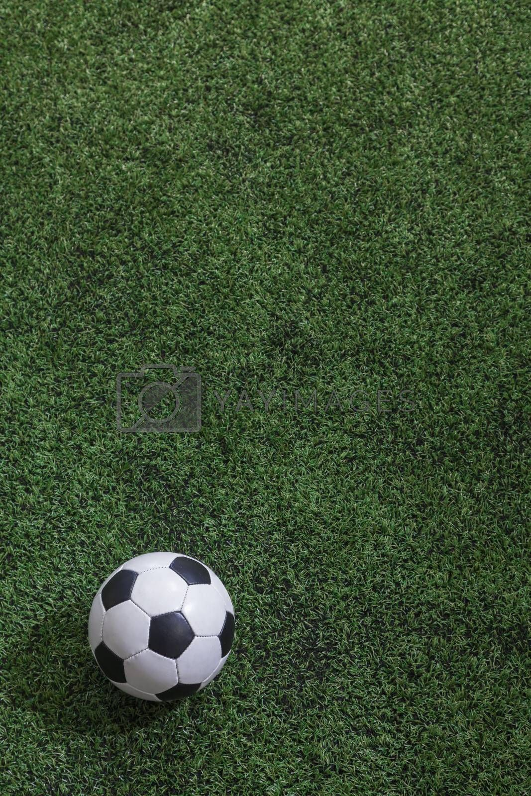 Soccer field with soccer ball
