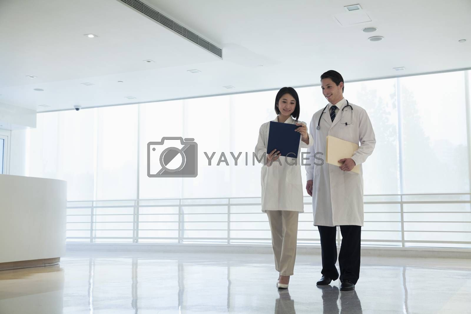 Two doctors standing and looking down at a document in the hospital, full length