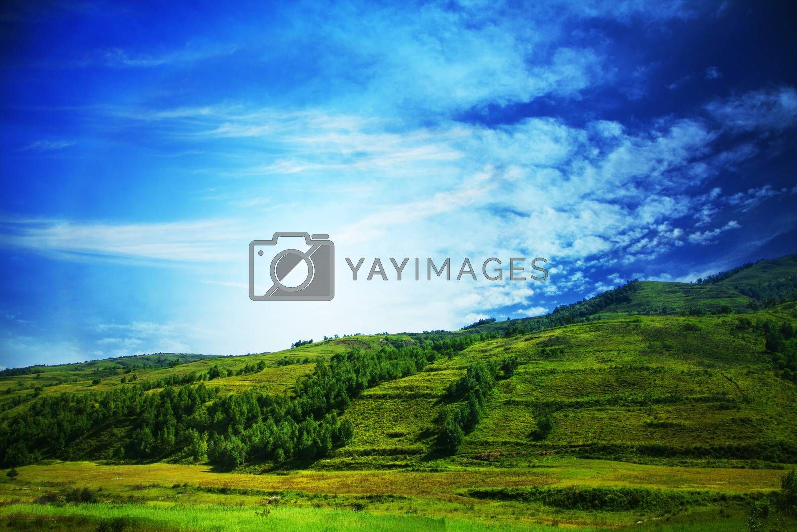 Lush, green landscape with blue sky and clouds. by XiXinXing