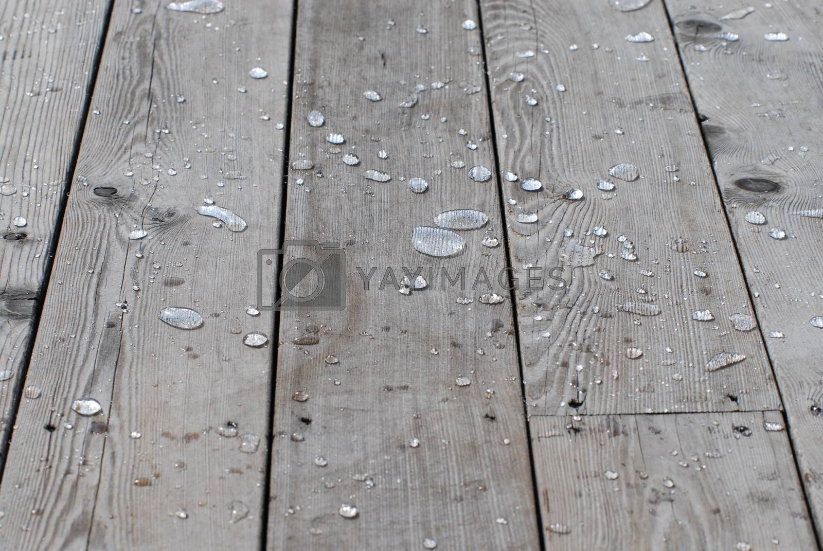 Rain on impregnated terrace