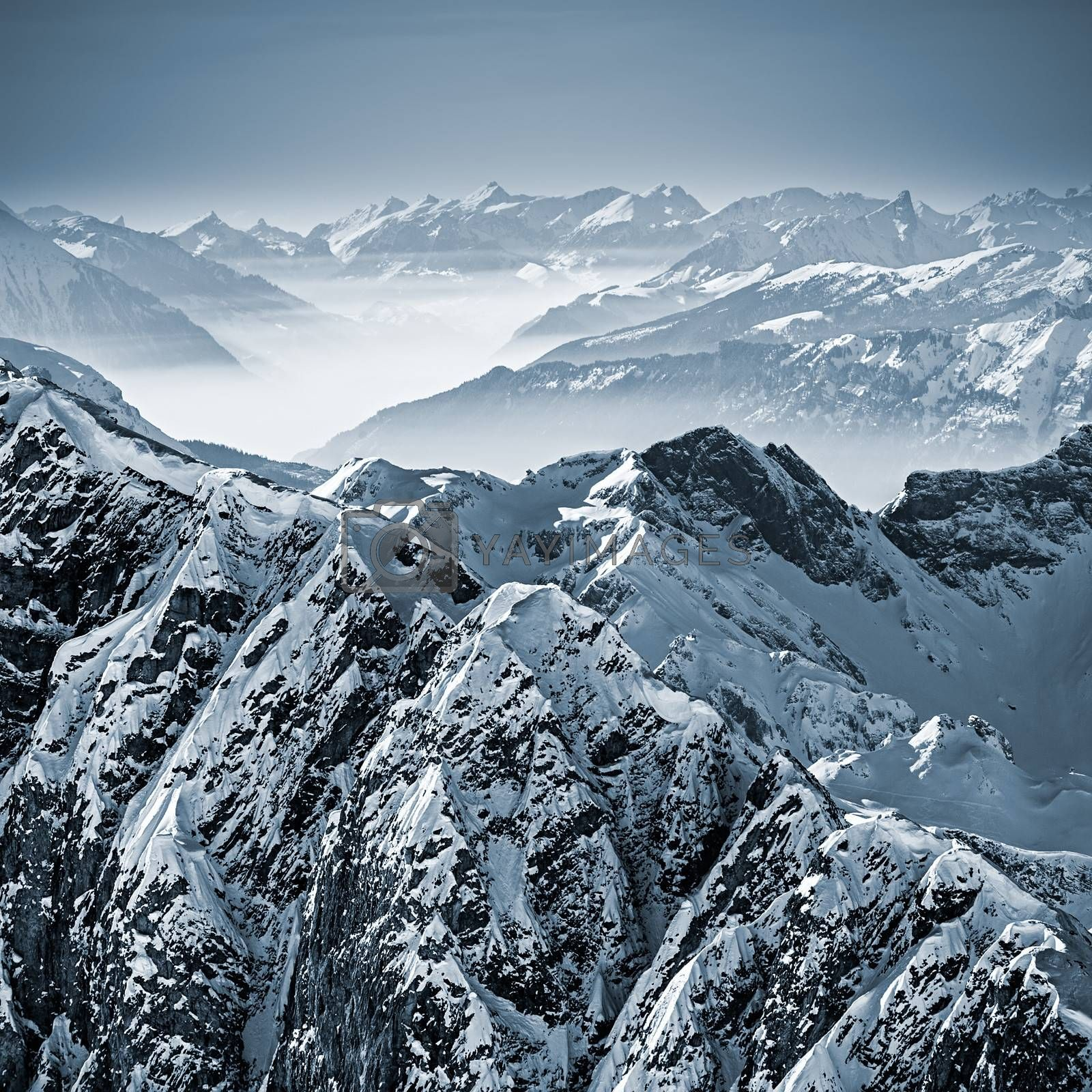 Royalty free image of Snowy Mountains in the Swiss Alps by ajn
