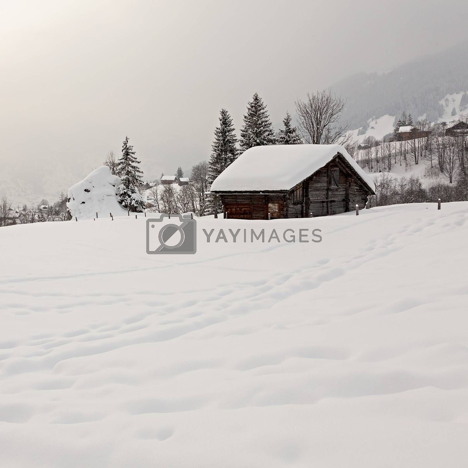 Royalty free image of Barn on Snowy Field by ajn