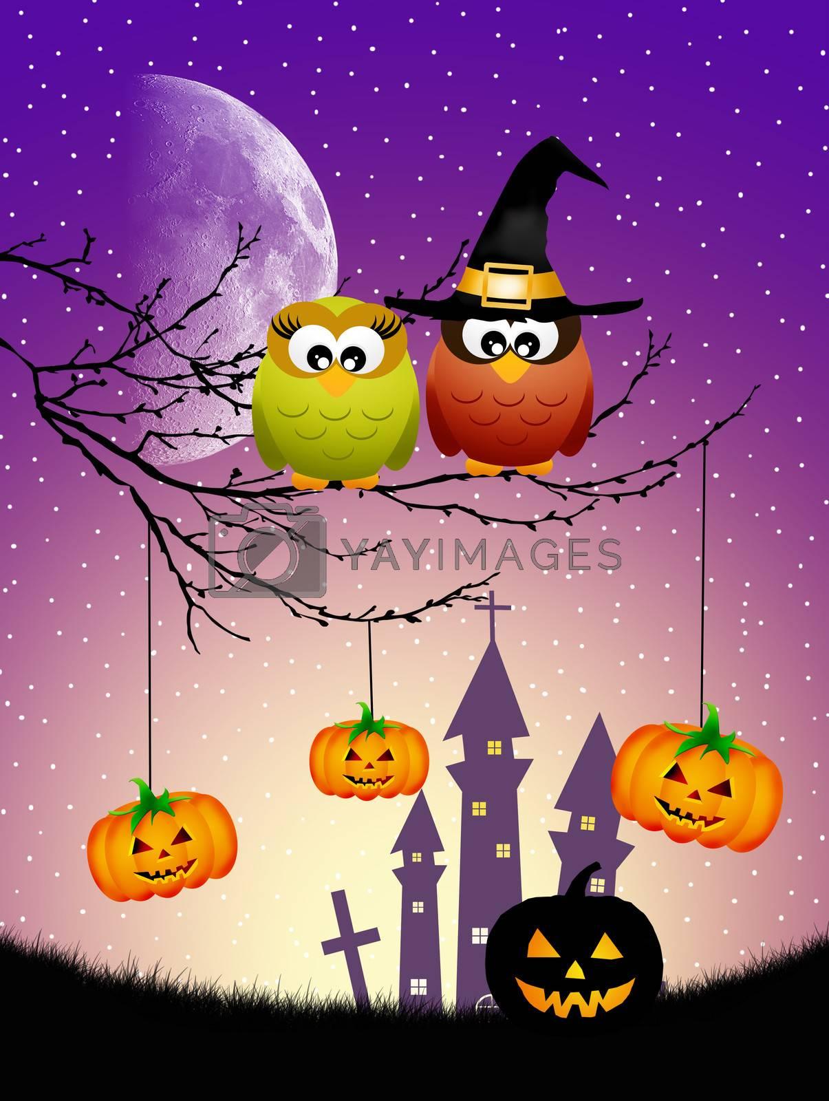 illustration of owls of Halloween