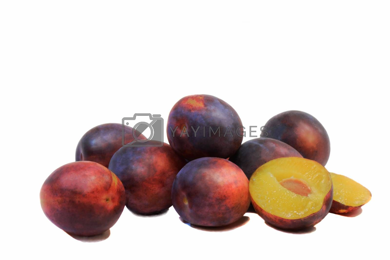 Large ripe plum and one exploded drain on white background