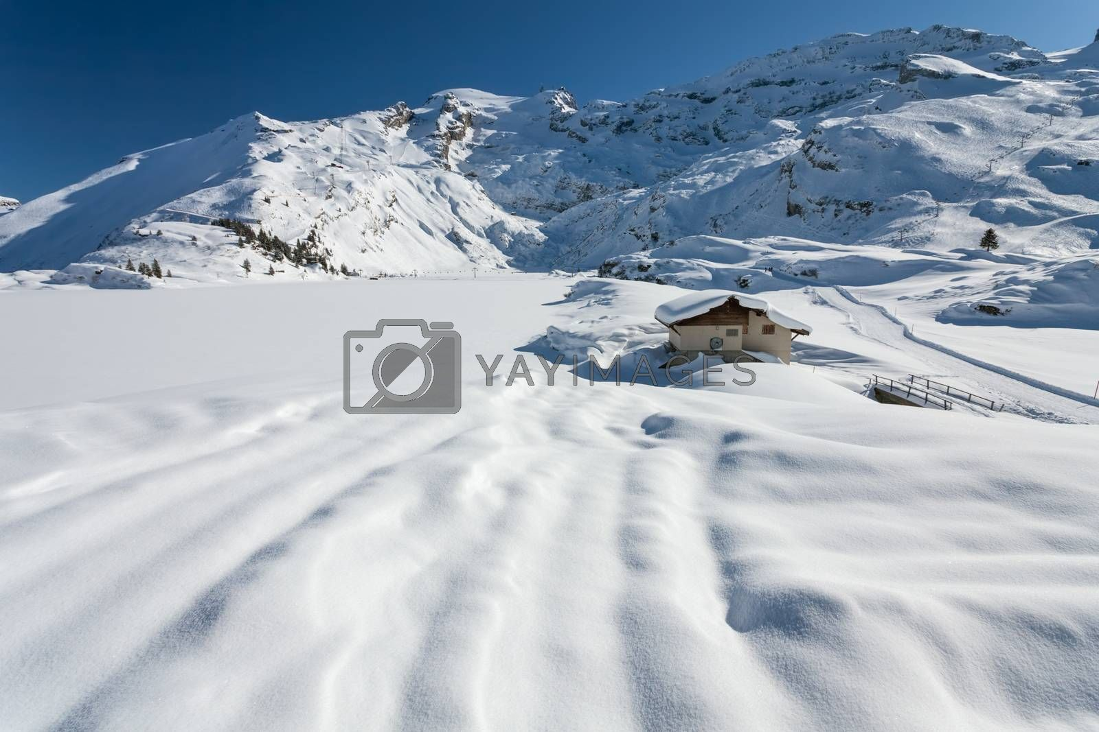 Royalty free image of The Alps by ajn