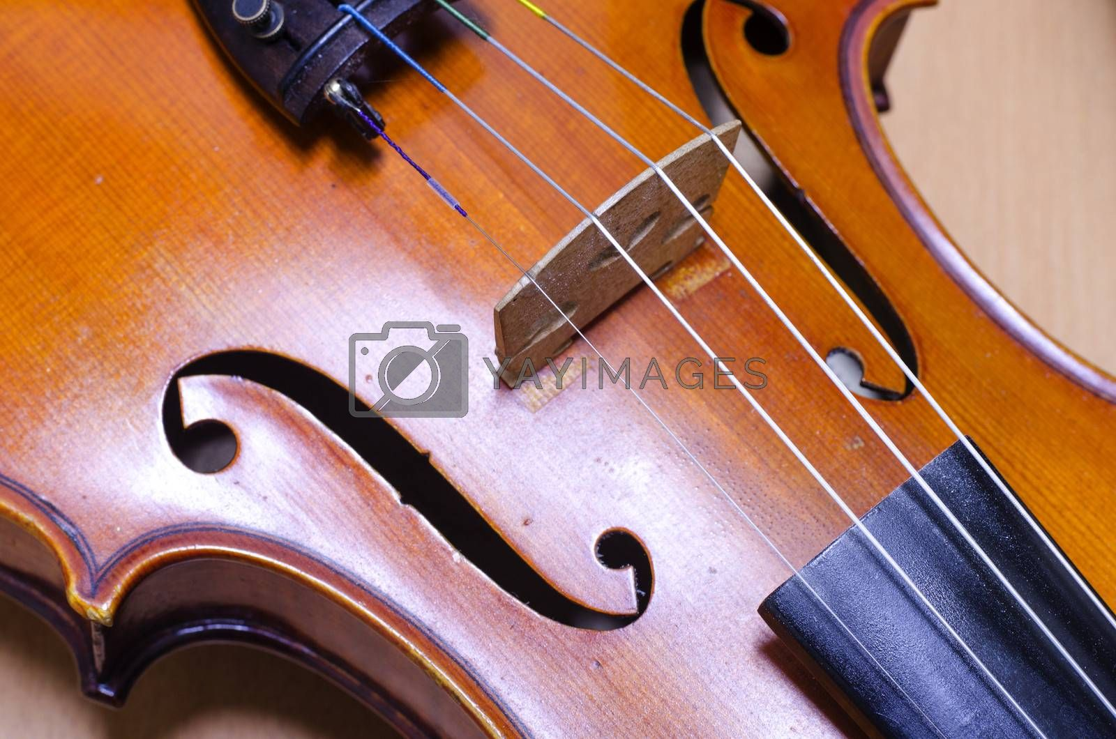 single soft brown violin with brown wallpaper