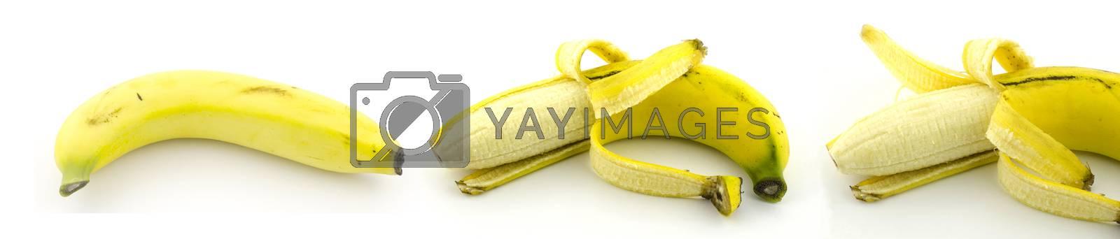 three banana isolate with white background