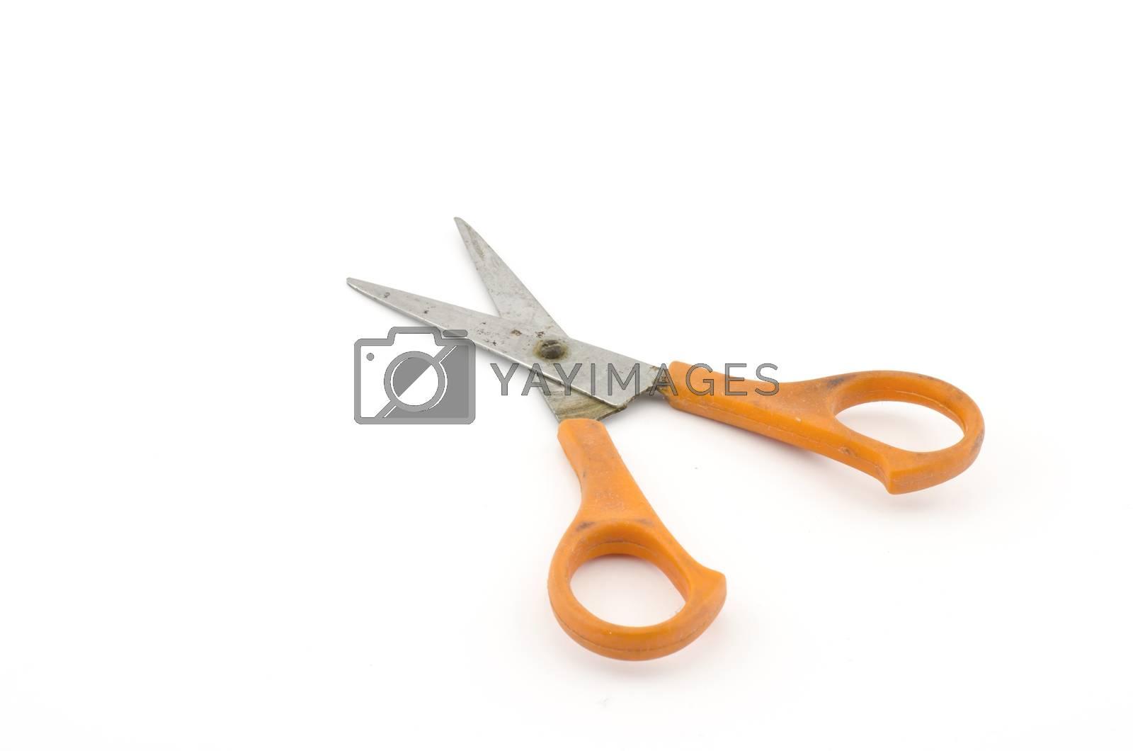 orange used scissors isolated on white background