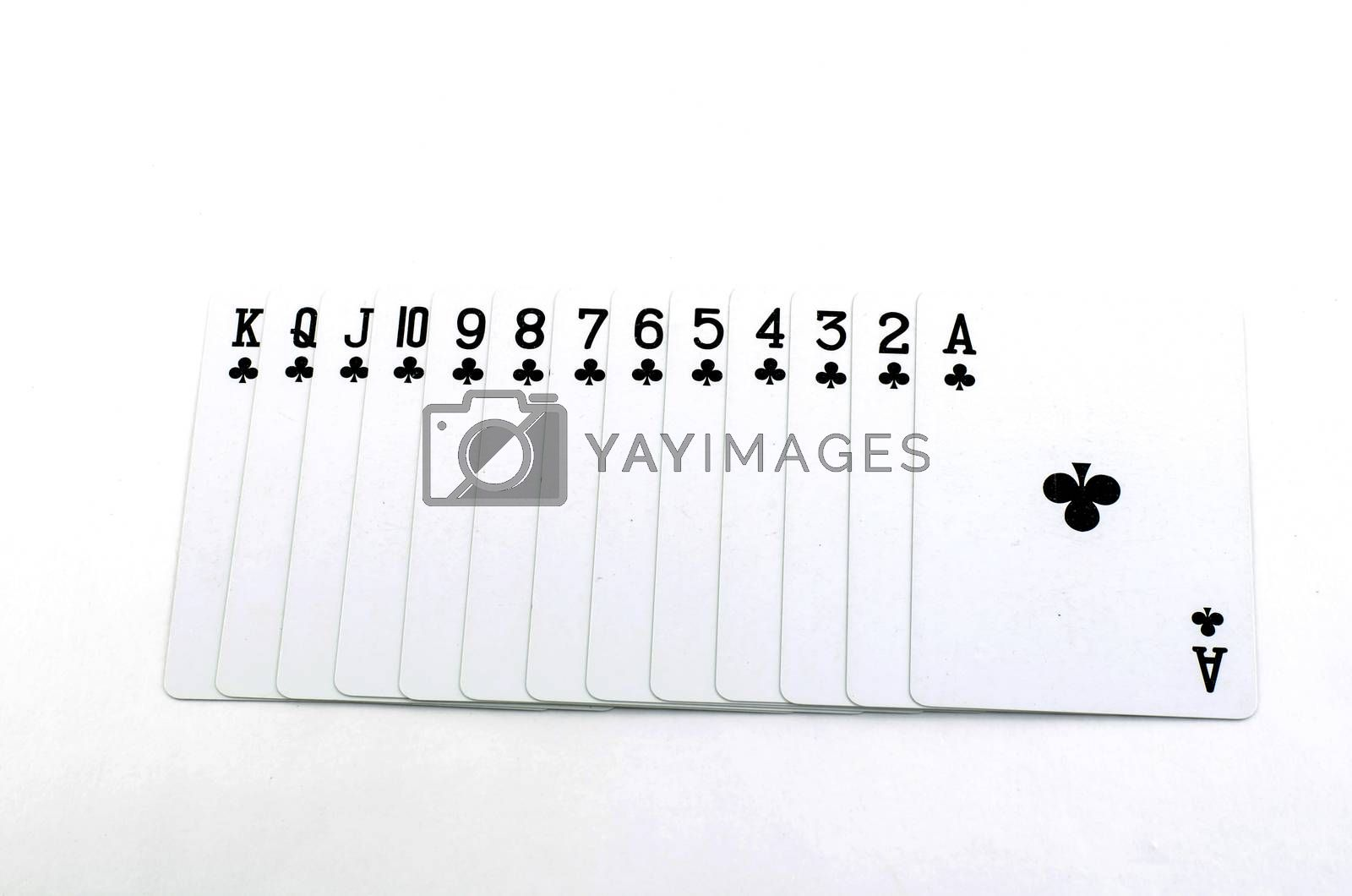 deck card isolated on white background