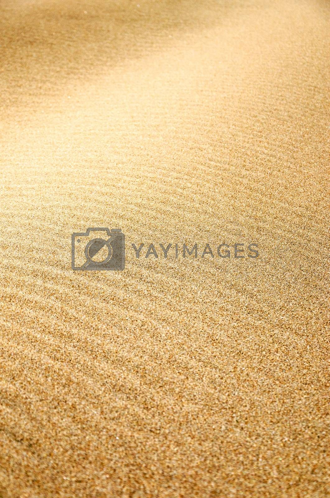 Sand texture on a beach in Oregon