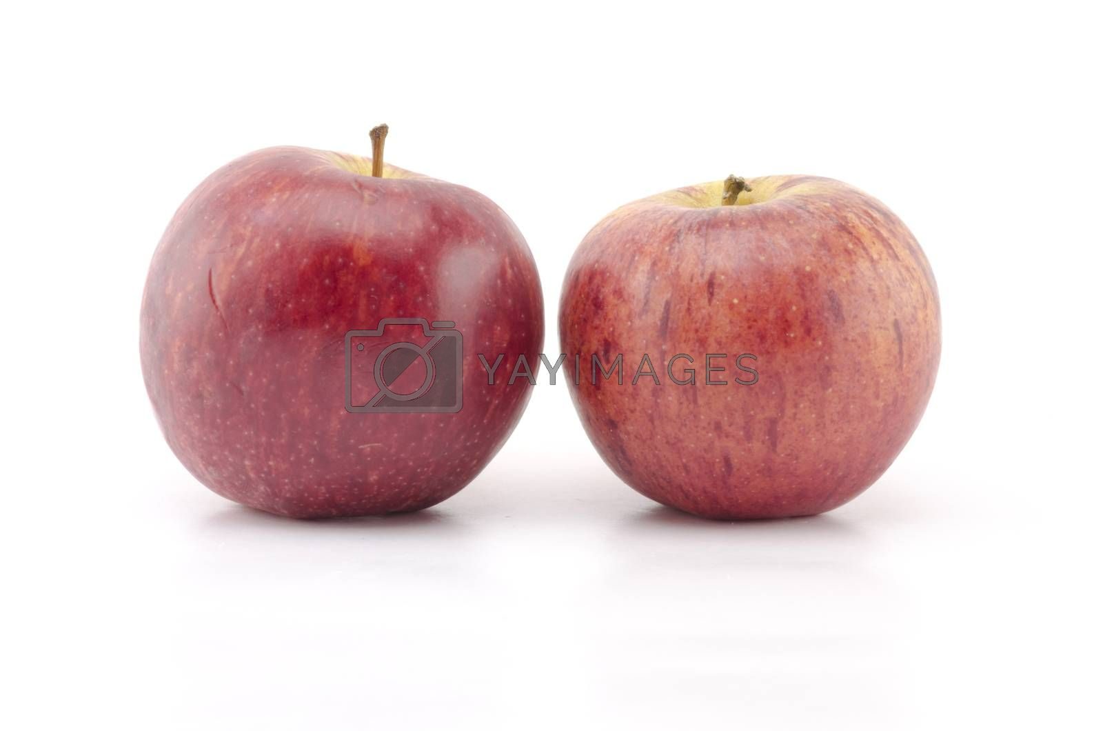 two apples isolated n white background