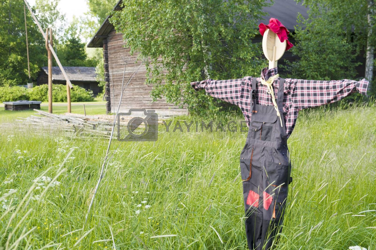 Scarecrow.  Taken in Elimaki village country museum in Finland on June 2013