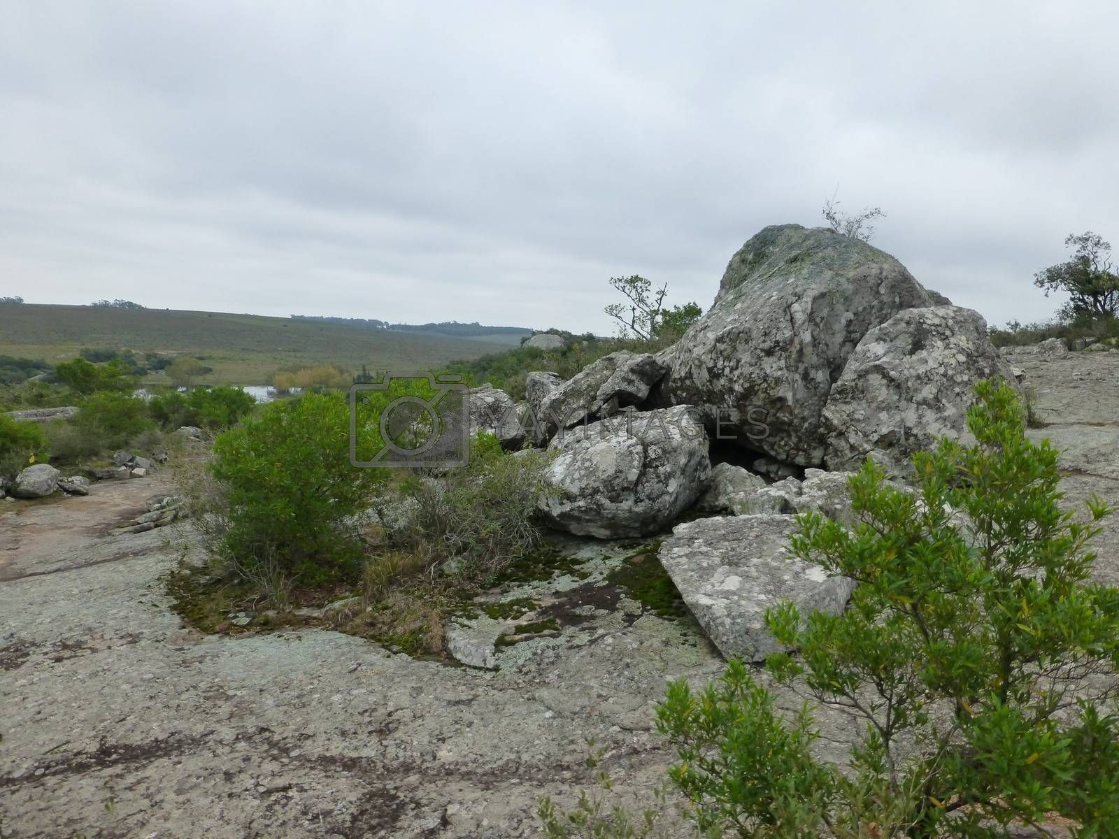 Rocks in the Countryside Landscape by DanFLCreative
