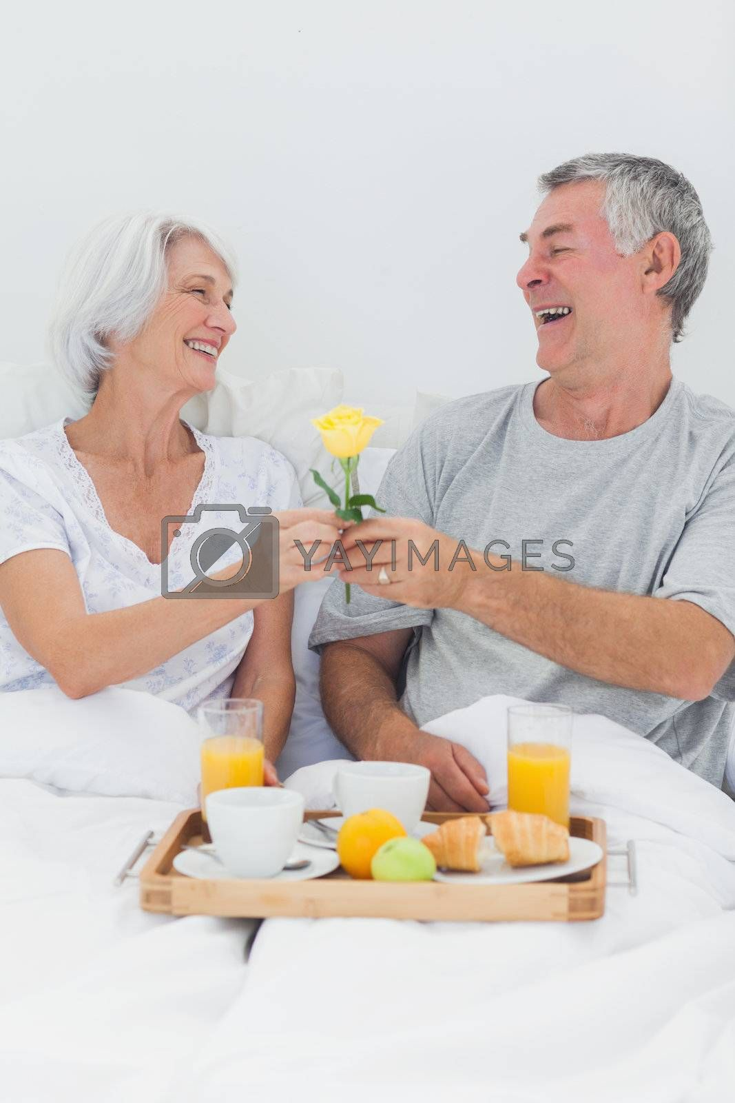 Mature man giving wife a yellow rose while they are having breakfast in bed