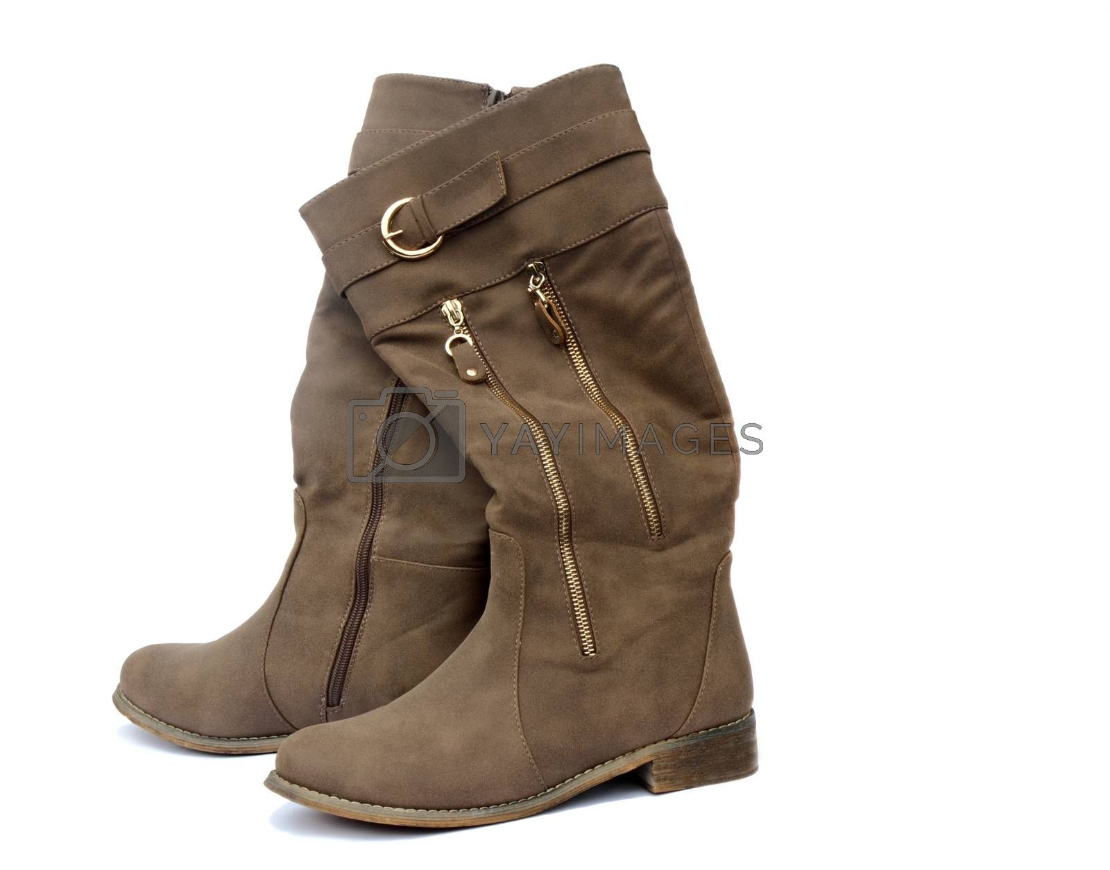 Women's brown soft skin boots with beautiful Chateaux. Presented on a white background