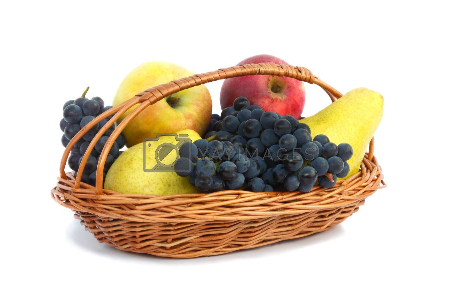 Ripe pears, apples and grapes in a wicker basket. Presented on a white background.
