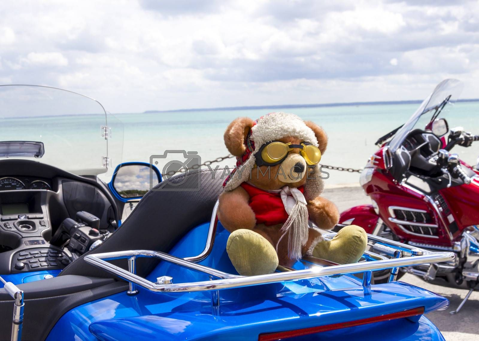 Teddy Bear toy on the blue motorbike on a seashore