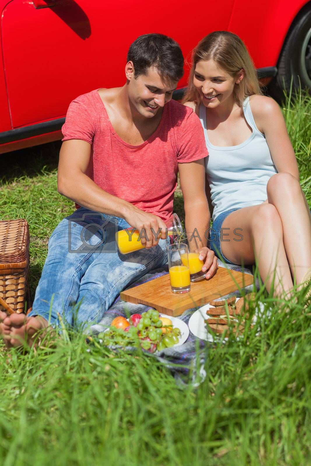 Happy couple sitting on the grass having picnic together by Wavebreakmedia