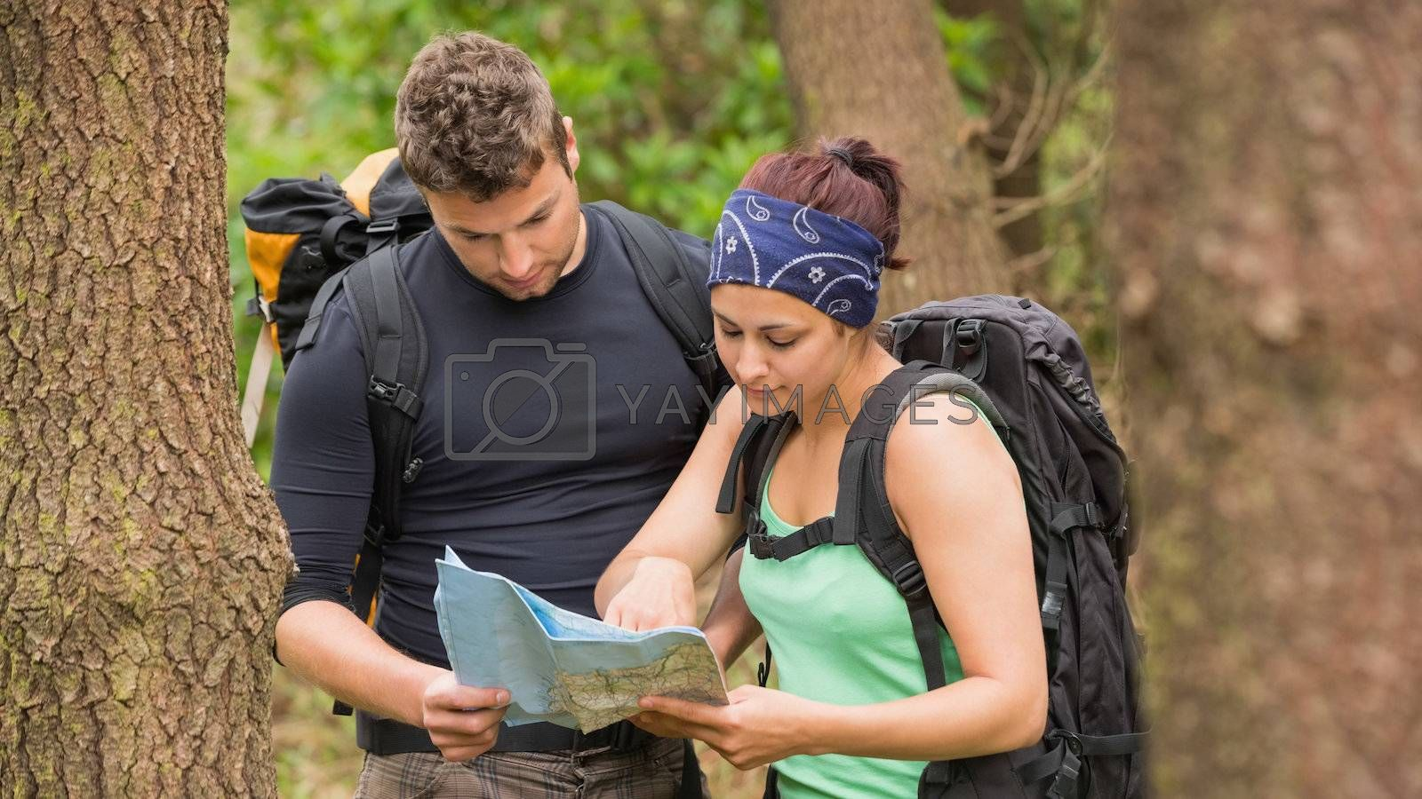 Fit couple reading map in a forest by Wavebreakmedia