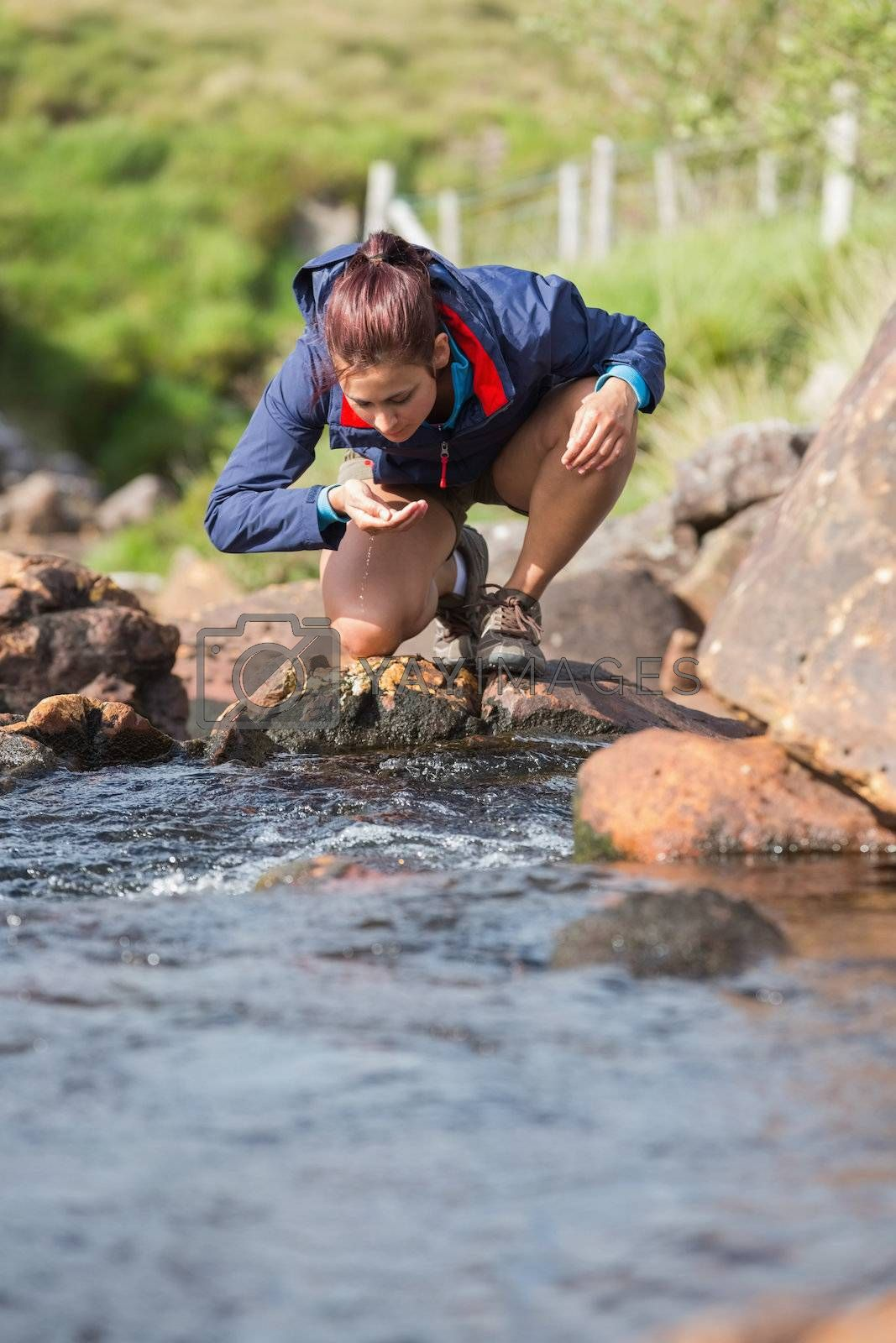 Hiker bending to take a drink from the stream by Wavebreakmedia