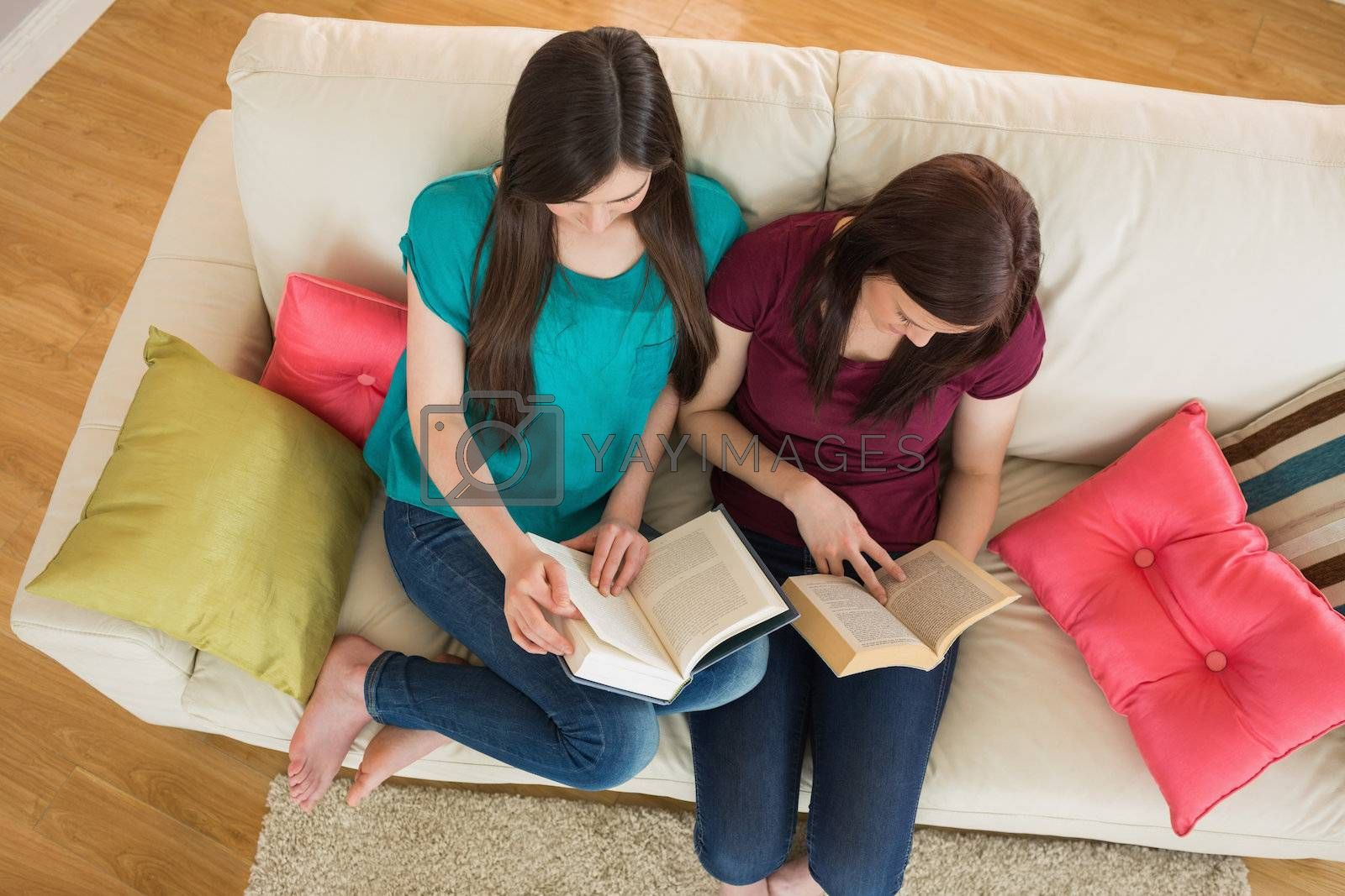 Two friends reading books on the couch by Wavebreakmedia