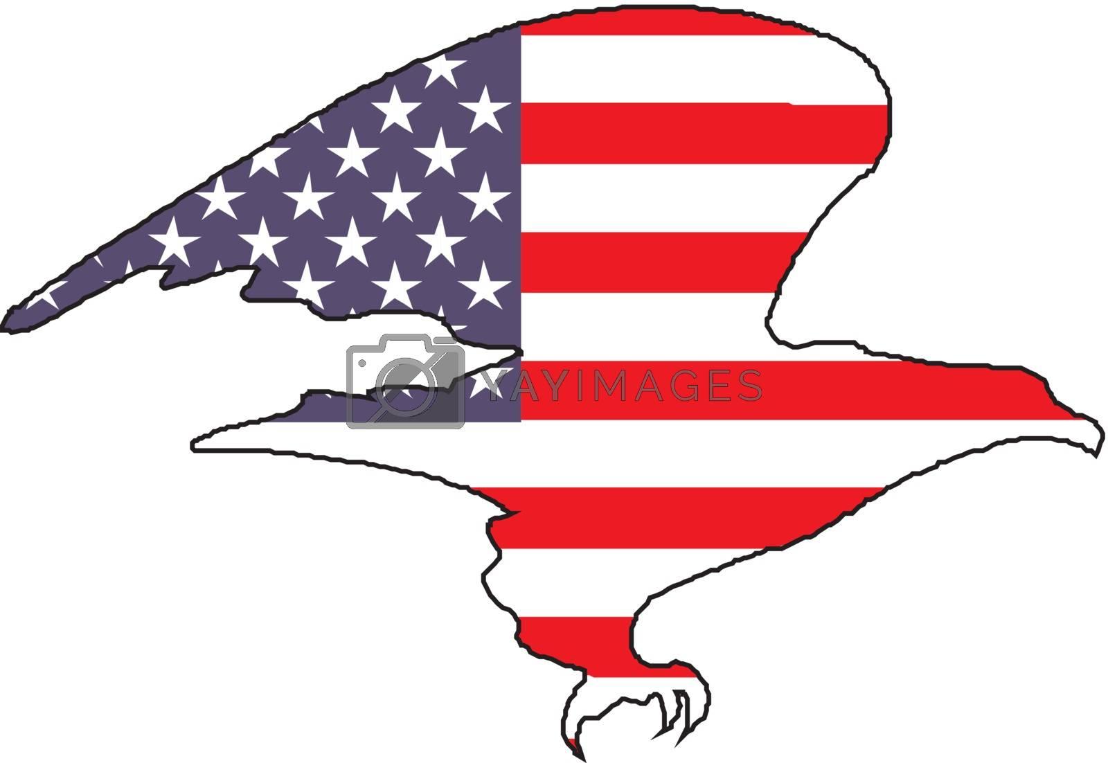 Illustration of an american bald eagle