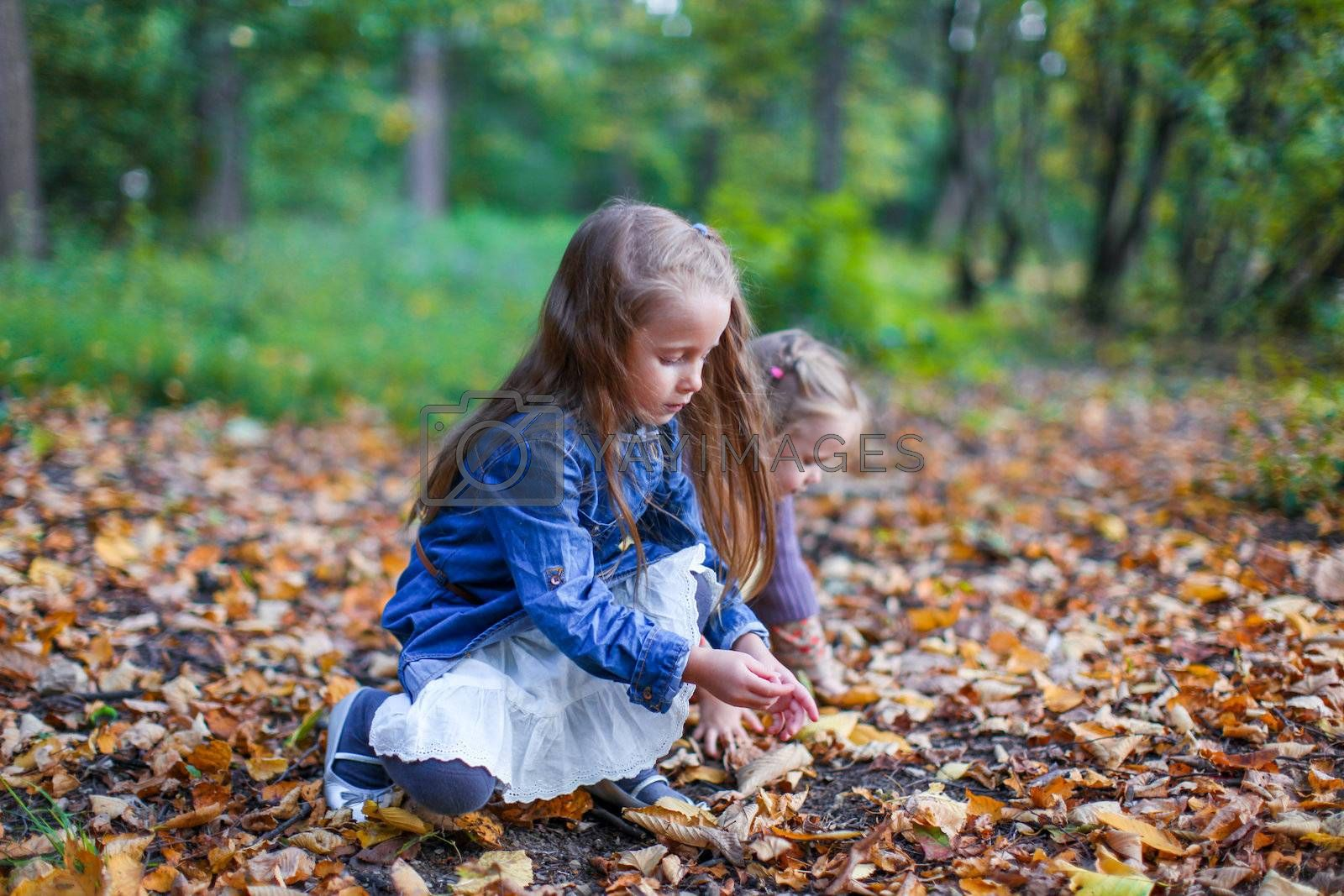 Two little beautiful girls sitting on the yellow meadow on a warm autumn day