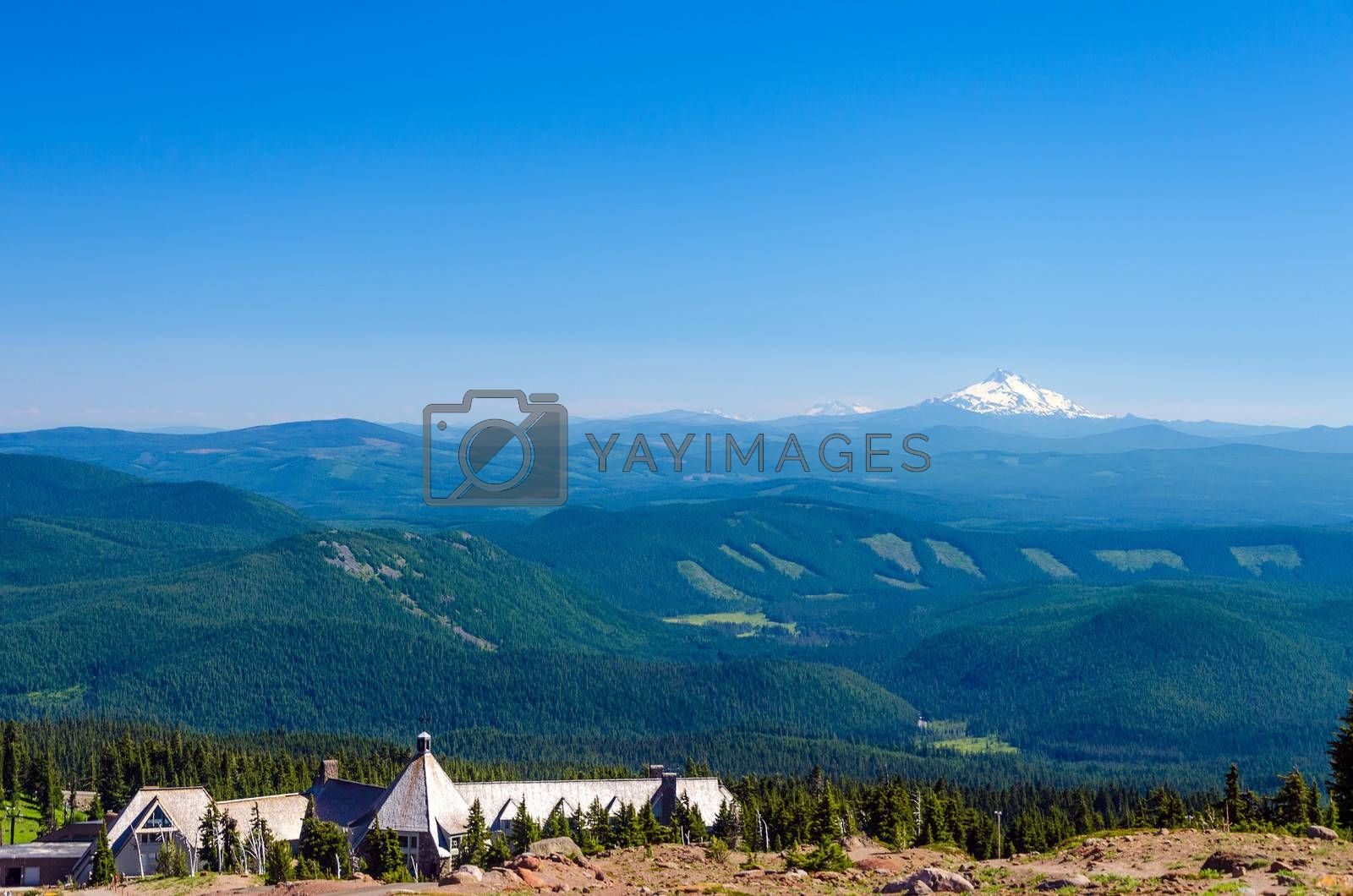 View of Mount Jefferson with Timberline Lodge and thick pine tree forests in Oregon