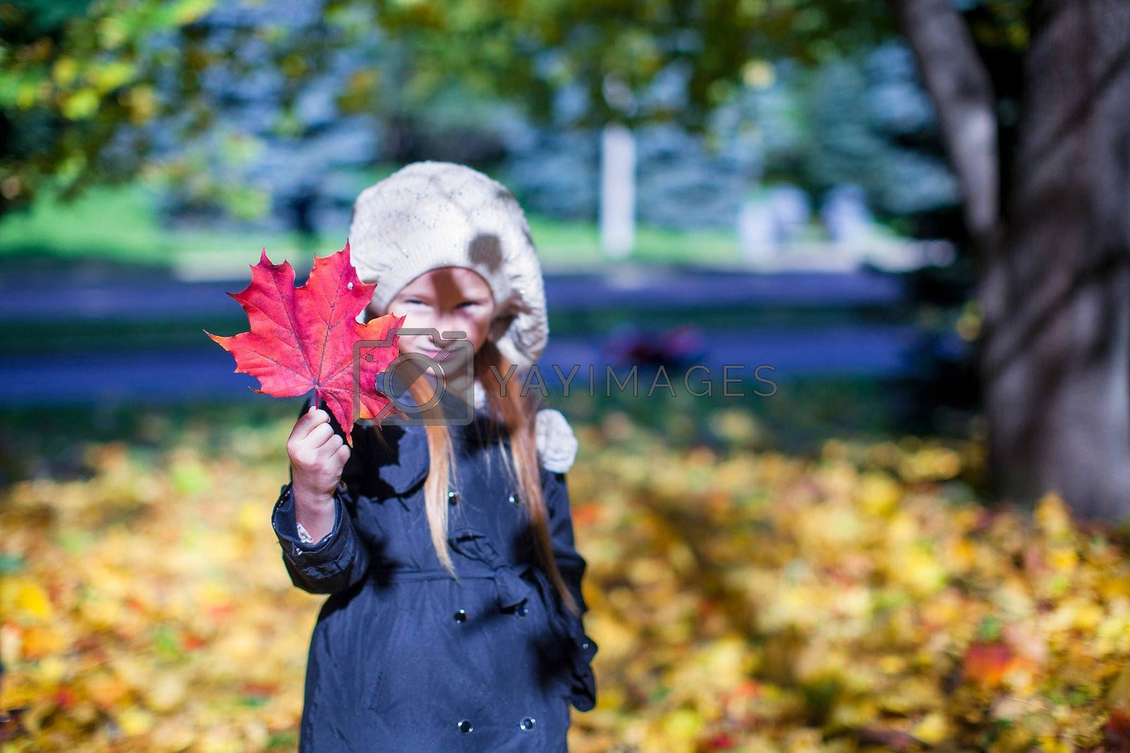 Close-up of a red maple leaf in the hands of a little girl in a beautiful fall day