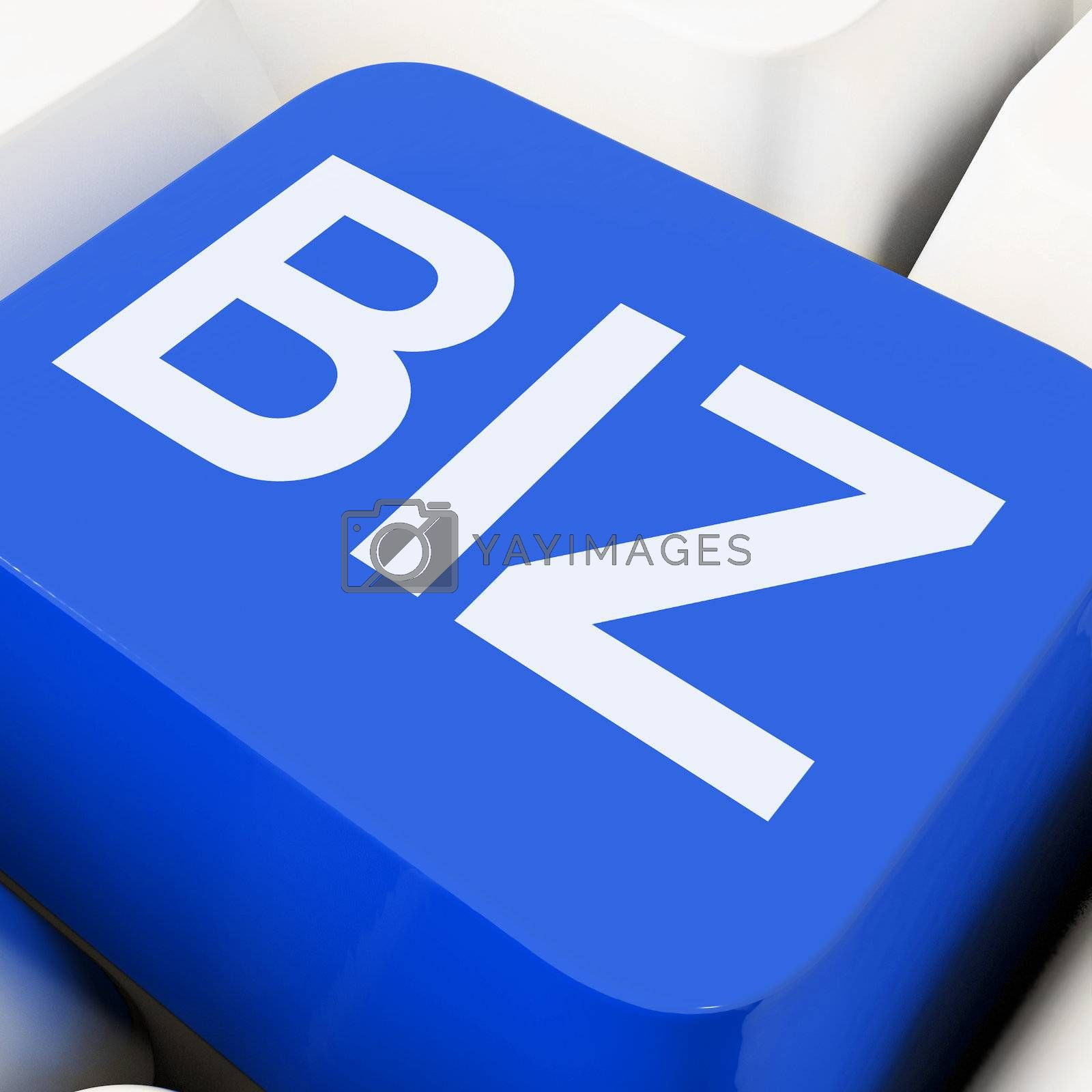 Biz Key Shows Online Or Web Business by stuartmiles