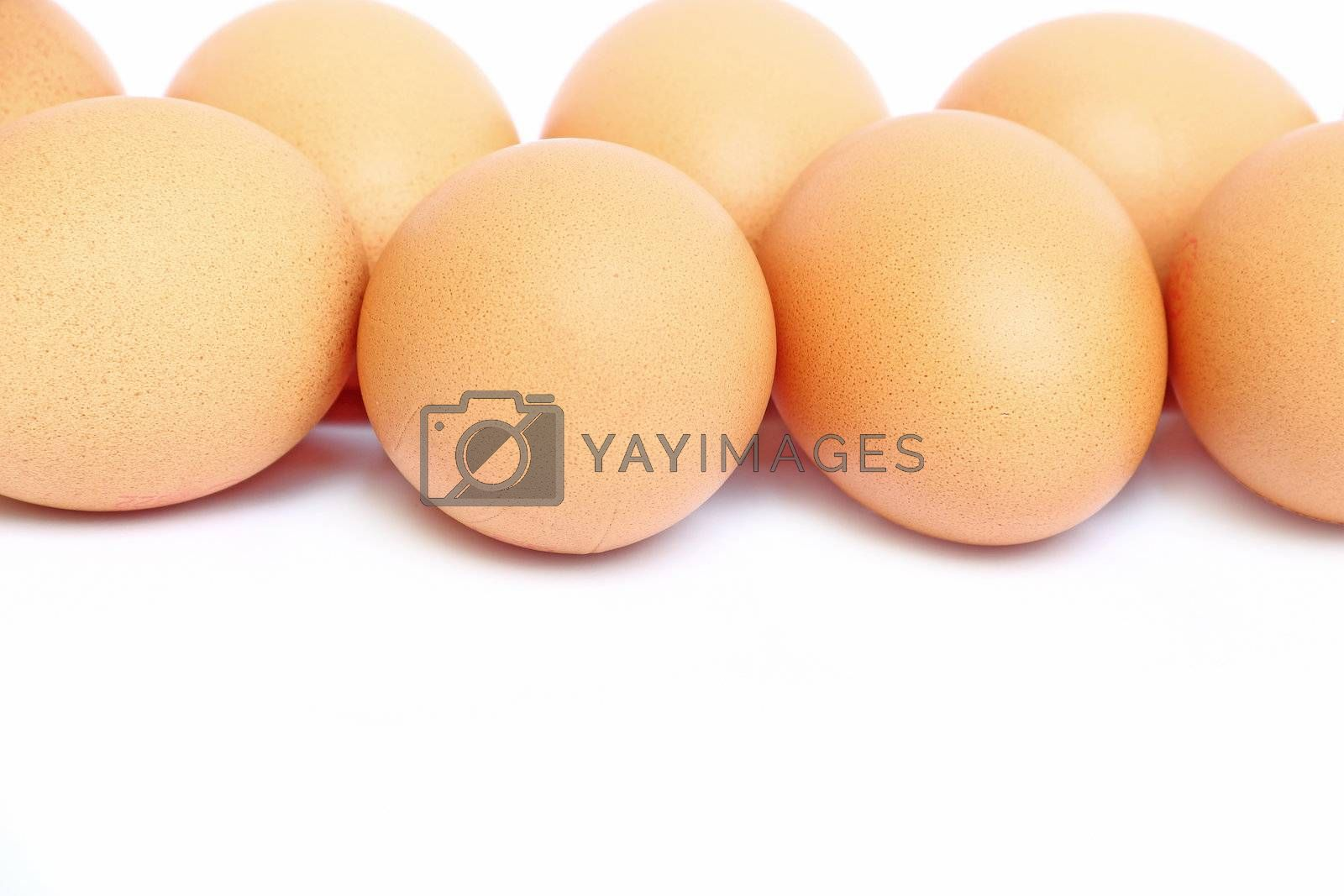Close up eggs isolated on white