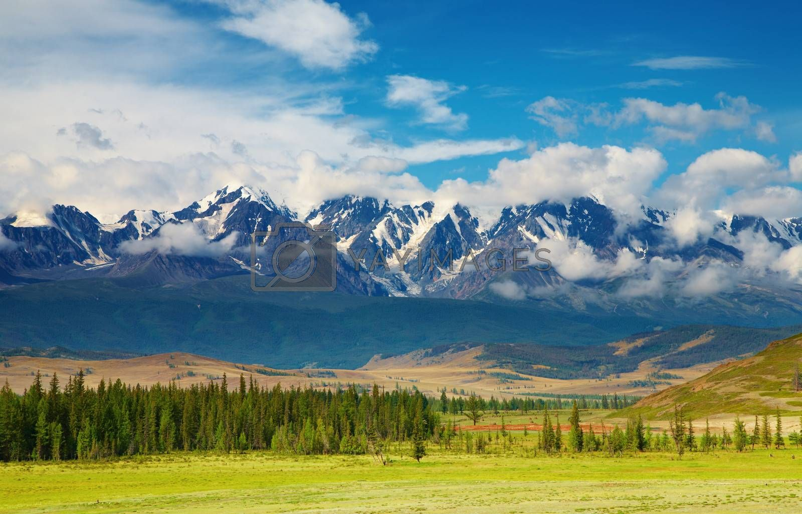 Mountain landscape with forest and blue sky, Altai mountains, Russia