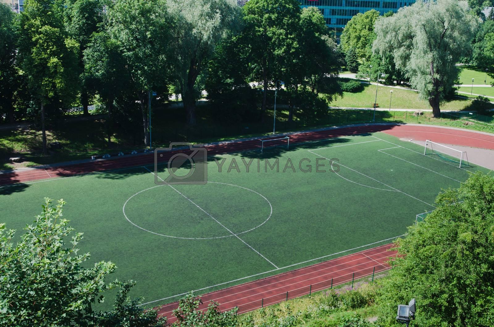 Stadium, football field. The top view
