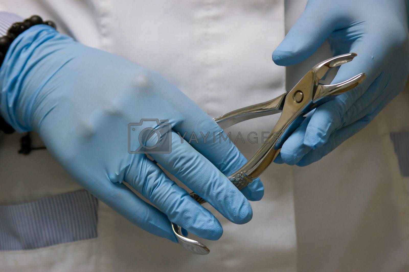 dentists hands in blue medical gloves with dental tools