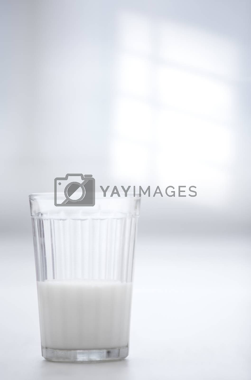 Glassful of milk on the table in white room