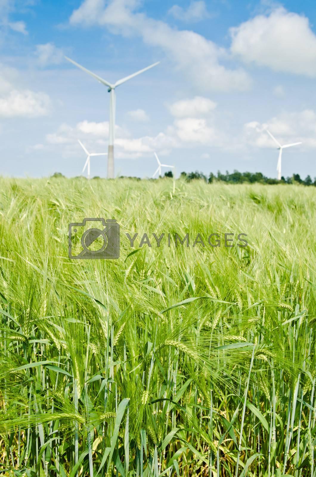 Summer landscape with wind generators