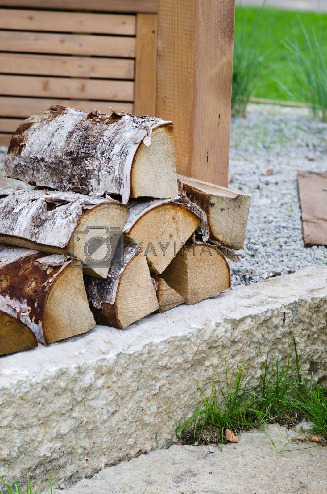 A pile of Birch wood in the garden, close-up