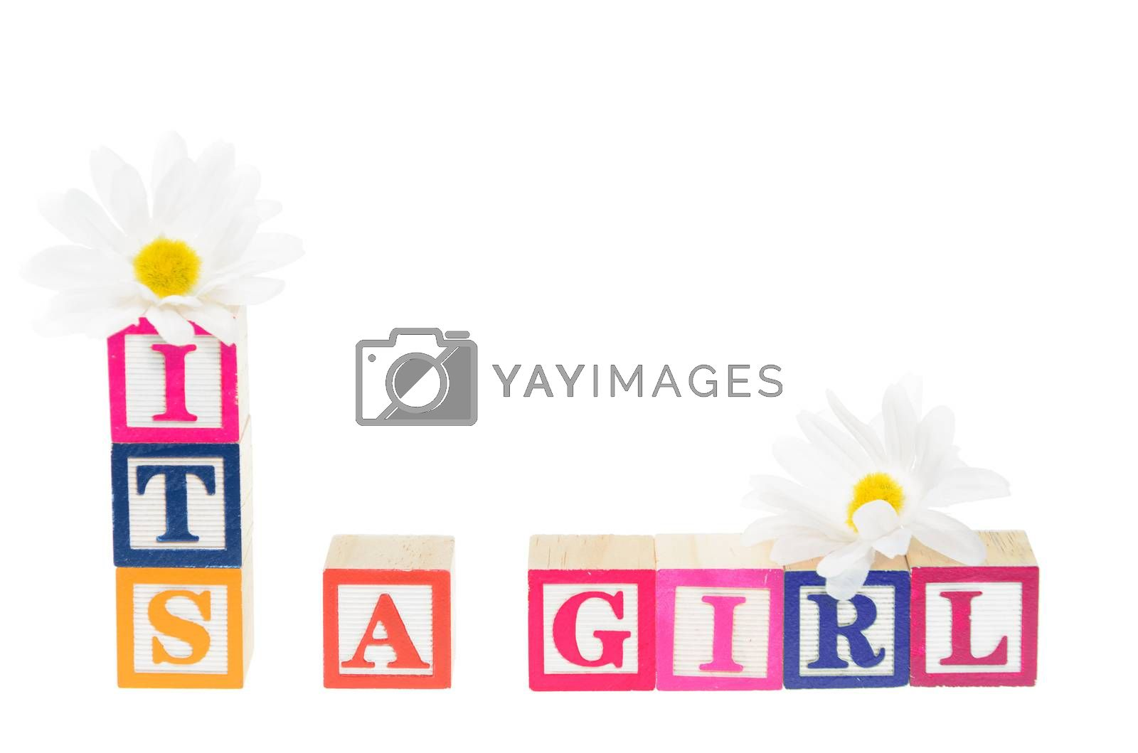 Letter blocks spelling its a girl with flowers. Isolated on a white background