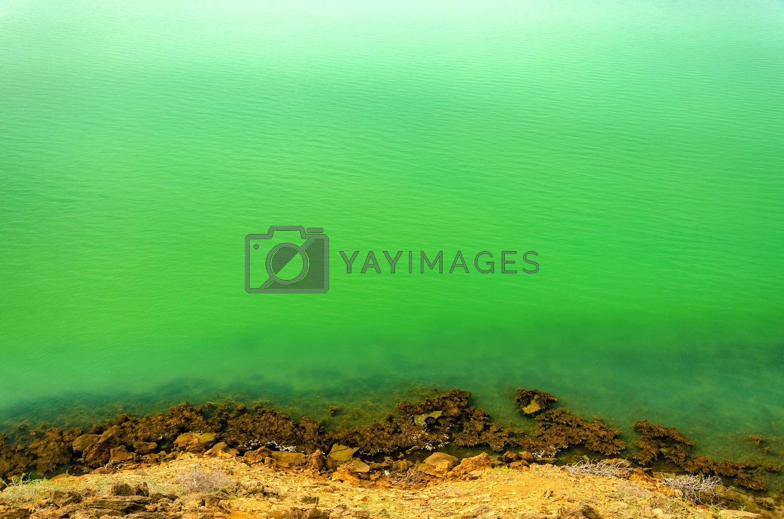 View of coastline with deep green Caribbean Sea water