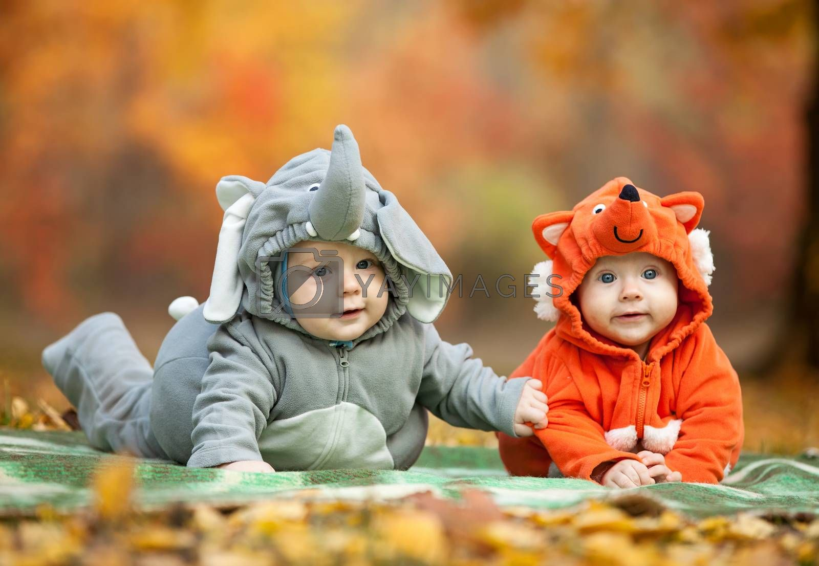 Two baby boys dressed in animal costumes in autumn park, focus on baby in elephant costume
