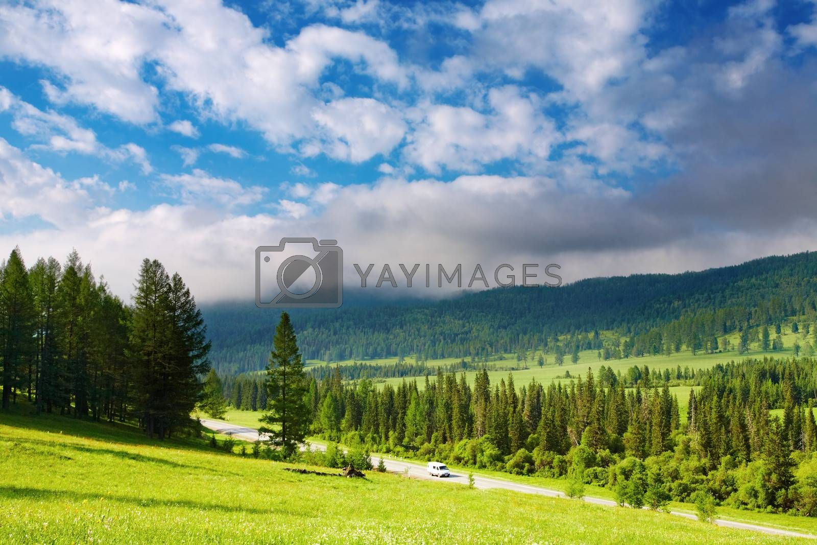 Mountain landscape with forest and cloudy sky
