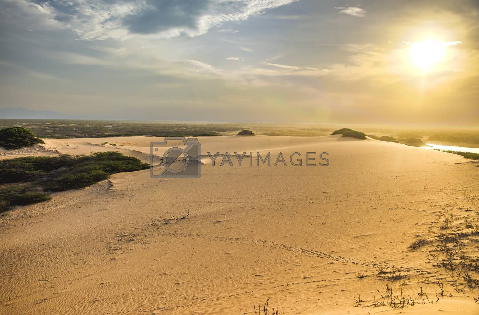 Looking into the sun on a sand dune in La Guajira, Colombia