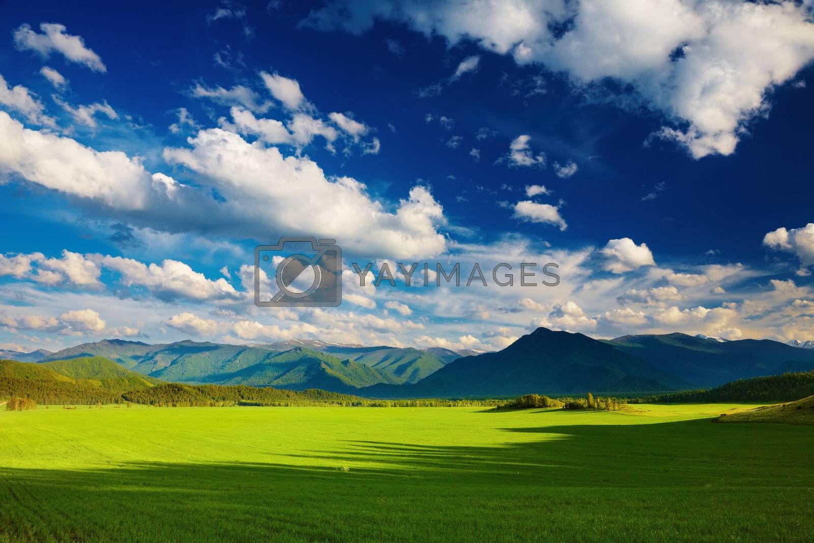 Mountain landscape with green field and blue sky